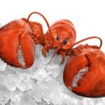 lobster-on-ice
