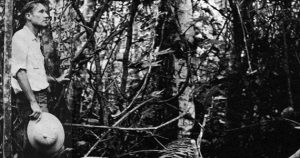 William S Burroughs Botanist